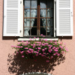 Old window — Stock Photo #4466540