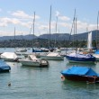 Zurich Lake marina — Stock Photo #4468897