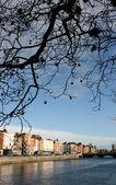 Dublin in autumn — Stock Photo