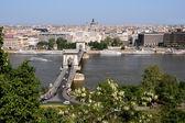 дунай, цепной мост и будапешт посмотреть — Стоковое фото