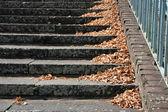 Herfst scène — Stockfoto