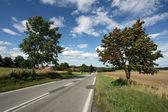 Straight road — Stock Photo