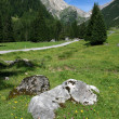 Austrian Alps — Stock Photo #4473788