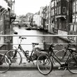Netherlands — Stock Photo #4493242