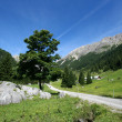 Tirol — Stock Photo