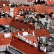 Stock Photo: Viennroofs