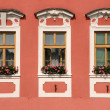 Old town windows — Stock Photo