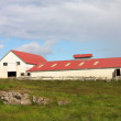 Farm in Iceland — Stock Photo