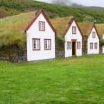 Iceland — Stock Photo #4514497