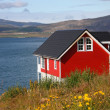 Red house — Stockfoto