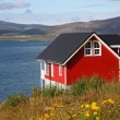Red house — Stock Photo