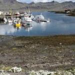 冰岛 — 图库照片 #4514787