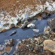 Stock Photo: Muddy thermal spring