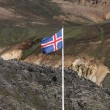 Icelandic flag — Stock Photo #4519096