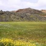 Исландия — Стоковое фото #4519291