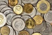Polish currency — Stock Photo