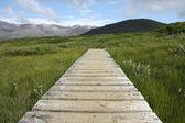 Skaftafell National Park — Stock Photo