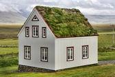 アイスランドの家 — ストック写真