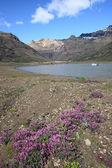Islândia - parque nacional — Fotografia Stock