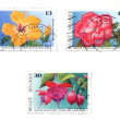 Collectible postage stamps — Photo