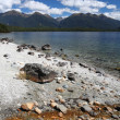 Stock Photo: Fiordland