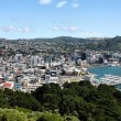 Wellington — Stock Photo
