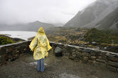 Rainy New Zealand — Stock Photo