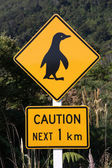 Penguin warning — Stock Photo