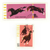 Horses on collectible stamps — Stockfoto