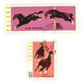 收藏邮票上的马 — 图库照片