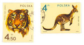 Old postage stamps with animals — Stock Photo