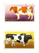 Old postage stamps from Poland — Stock Photo