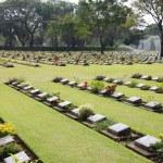 War cemetery — Stock Photo