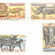 Stock Photo: Africanimals on postage stamps