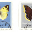 Butterflies - stamps collection — Stock Photo #4531851