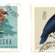 Stamps — Stock Photo #4531891