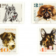 Dogs on Polish postage stamps - Foto Stock