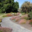 Botanic Gardens — Stock Photo