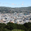 Wellington, New Zealand — Stock Photo