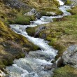 Small stream or brook in Norway — Stock Photo #4539655