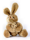 Bunny rabbit cuddly toy — Stock Photo