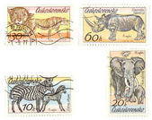 African animals on postage stamps — Stock Photo