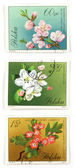 Tree blossom collectible post stamps — Stock Photo