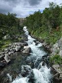 Beautiful mountain stream — Stock Photo