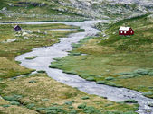 River and small houses in Norway — Stock Photo