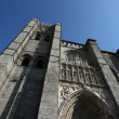 Avila cathedral - Stock Photo