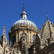 Salamanca cathedral — Stock Photo #4543969