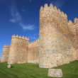 Medieval city walls — Stock Photo