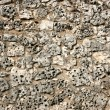 Limestone wall — Stock Photo