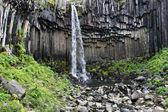 Svartifoss - ijsland — Stockfoto